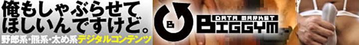 bfs_bn1e