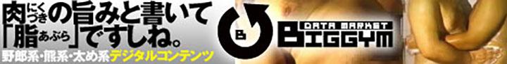 bfs_bn1h